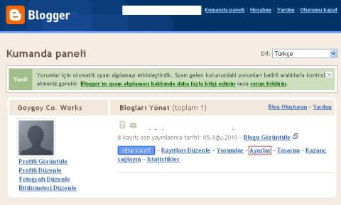 [Resim: blogspot-ayarlar.jpg?w=480&h=289]
